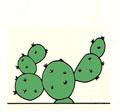 Tipo de tallo del cactus